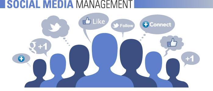 Social Media Management Can Make Your Website Go Viral