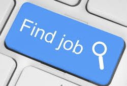 Tips To Perform A Great Online Job Search