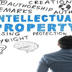 MEM Concessions LLC - Understanding Intellectual Property Rights