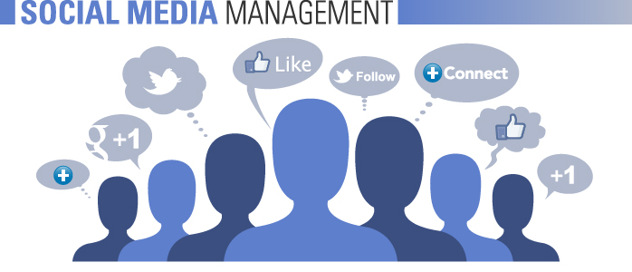 Social Media Management Can Make Your Website Go Viral